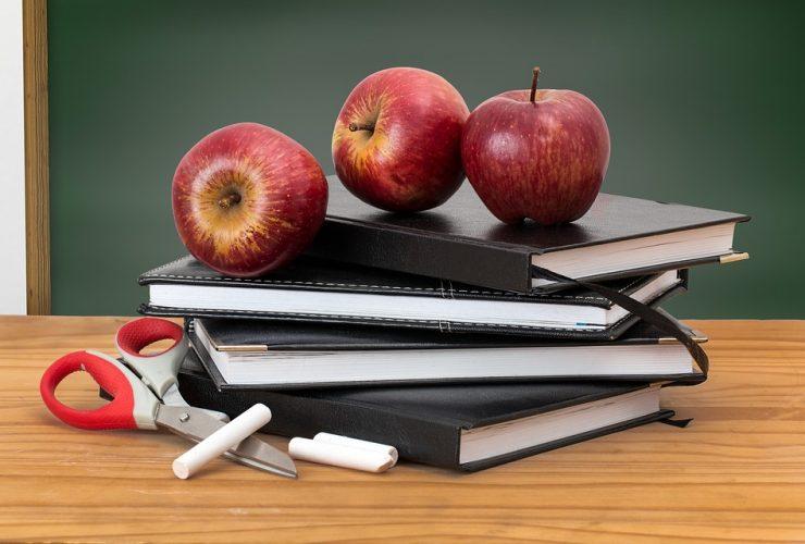 Gauteng Schools